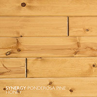 Synergy Ponderosa Pine Honey